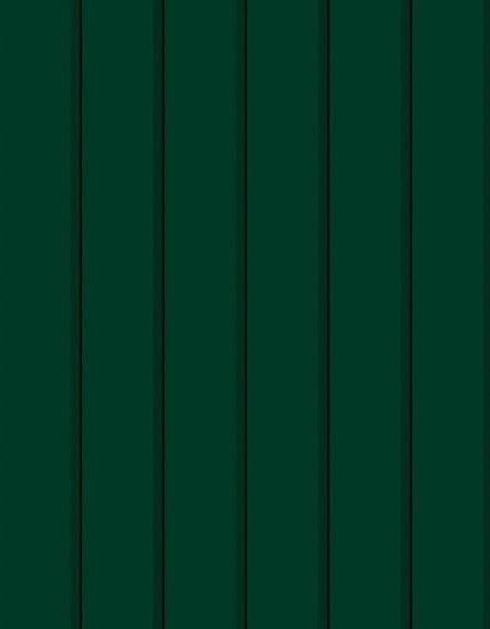 Зелений мох